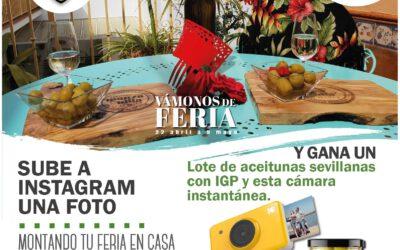 I CONCURSO FOTOGRÁFICO ACEITUNAS IGP MANZANILLA Y GORDAL DE SEVILLA, VÁMONOS DE FERIA.