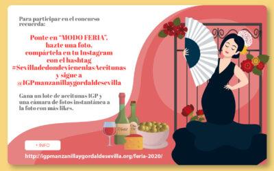 Concurso Feria 2020