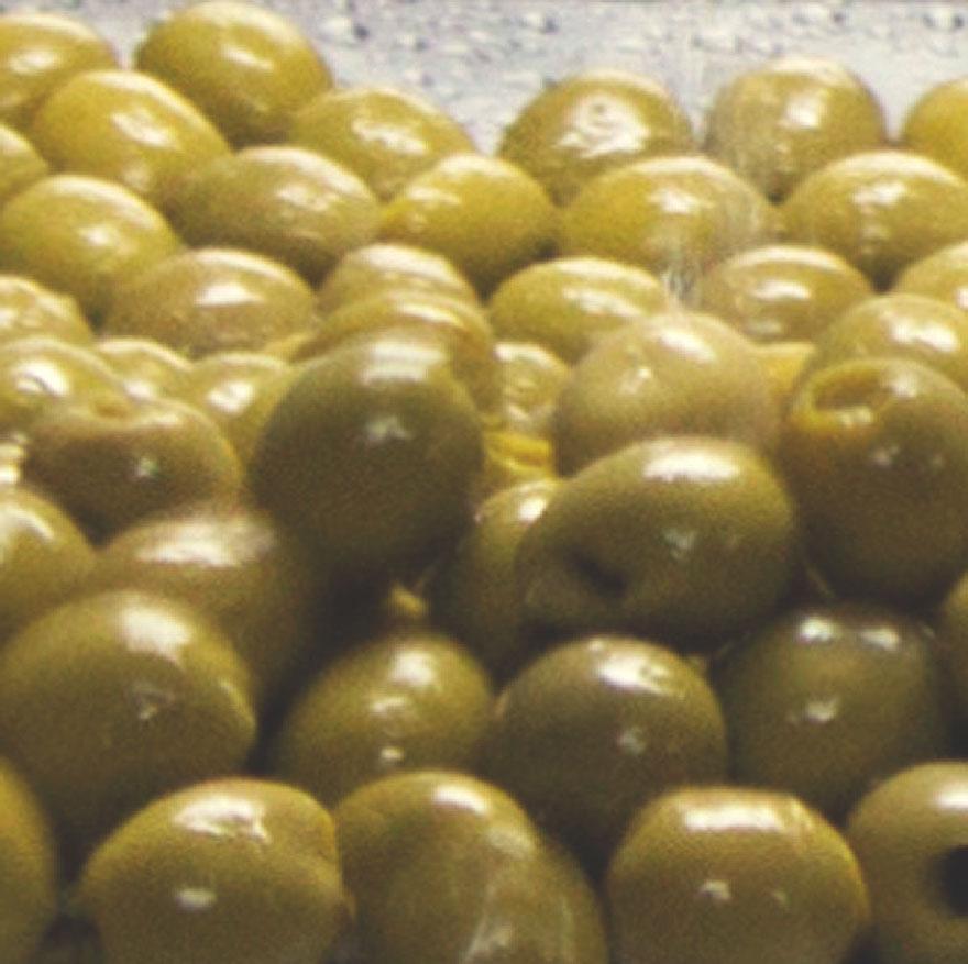 Aceituna Manzanilla de Sevilla 1