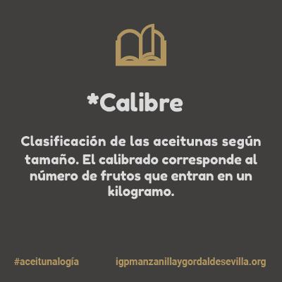 Aceitunalogía, diccionario de la Aceituna Sevillana de Mesa 2