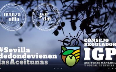 Territorio de Verdeo – Territorio IGP Aceitunas Manzanilla y Gordal de Sevilla