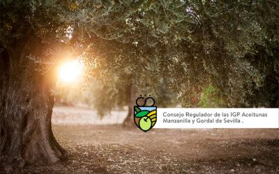 EL CONSEJO REGULADOR DE LAS INDICACIONES GEOGRÁFICAS PROTEGIDAS DE LA MANZANILLA Y GORDAL DE SEVILLA HACE BALANCE DE 2020 Y APERTURA EL PLAZO PARA NUEVAS INSCRIPCIONES EN 2021.