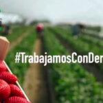 Lanzan una iniciativa en apoyo para dignificar el trabajo de los agricultores/as de la campaña de frutos rojos