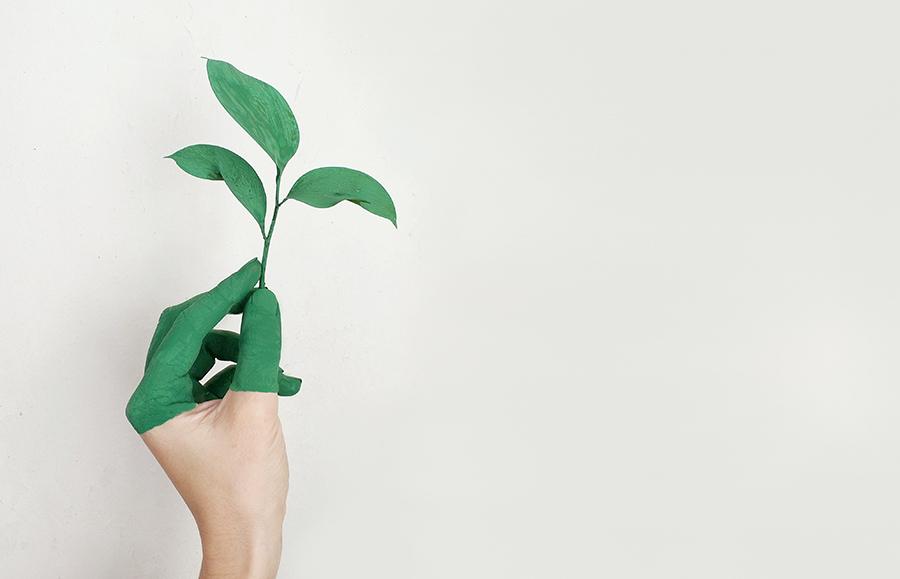 Los consumidores españoles, cada vez más interesados por conocer las prácticas de sostenibilidad de las marcas