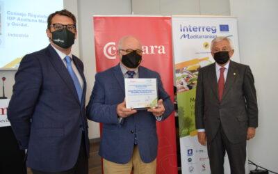 La Indicación Geográfica Protegida Aceitunas Manzanilla y Gordal de Sevilla premiada por la promoción de la Dieta Mediterranea.