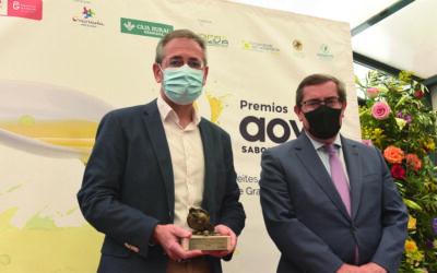 Entregados los premios a los mejores AOVEs granadinos