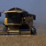 Interpuesto un recurso de alzada contra la resolución que supuso la prohibición de cosechar por riesgo de incendio