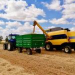 Los precios de los cereales suben levemente pero muestran indicios de que los buenos tiempos han tocado a su fin
